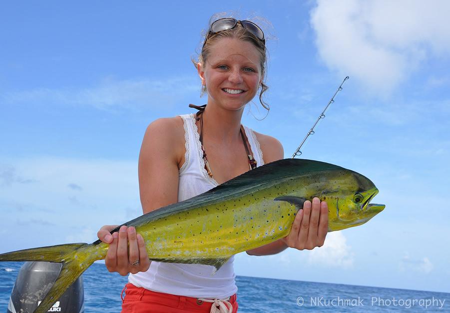 mahi-mahi-dorado-fish